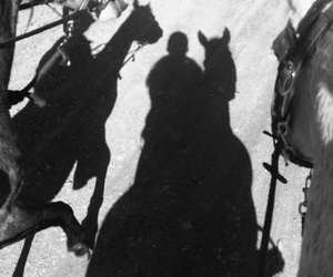 horses, riding, and shadow image
