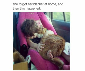 blanket, cat, and baby image