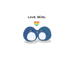 love wins, gay, and love image