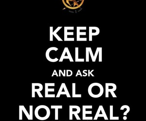 real, quote, and hunger games image