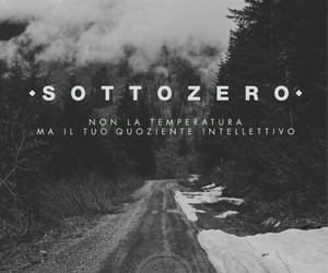 quotes, frasi italiane, and quoziente intellettivo image