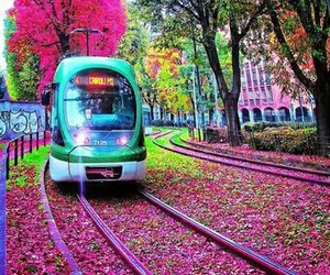 pink, train, and colors image