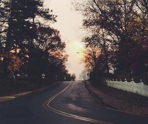 beautiful, fall, and trees image