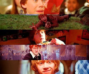 funny, rupert grint, and harry potter image