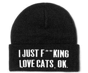 cats, fashion, and cute image