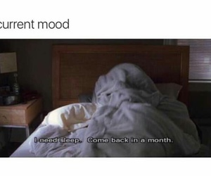 funny, sleep, and lol image