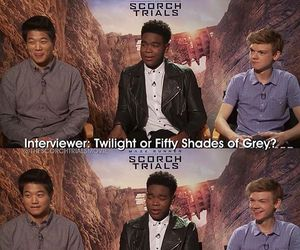 the maze runner, tmr, and thomas brodie-sangster image