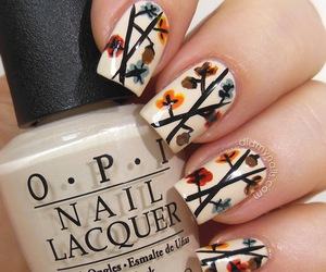 nails, acorn, and branches image