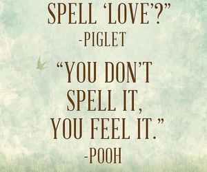 love, quotes, and piglet image