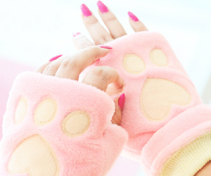 cat, paw, and fashion image