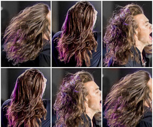Harry Styles, hair, and one direction image