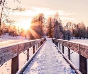 winter, snow, and sun image