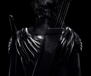 mockingjay, katniss everdeen, and the hunger games image