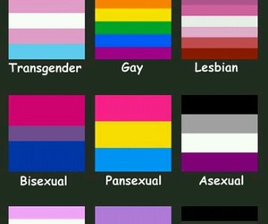 asexual, gay, and love image