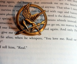 hunger games, book, and the hunger games image
