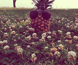 flowers, pineapple, and sunglasses image
