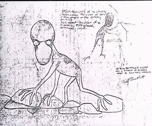 cryptid, cryptozoology, and dover demon image