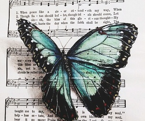 butterfly and music image