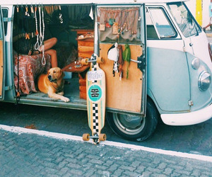 dog, hippie, and summer image