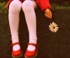red, flowers, and shoes image