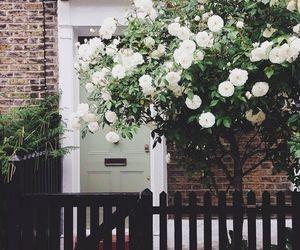 flowers, home, and door image