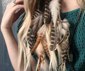 feathers and hair image