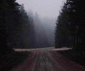 autumn, foggy, and dark image