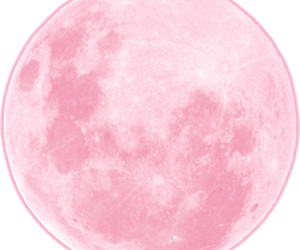 moon, night, and pink image