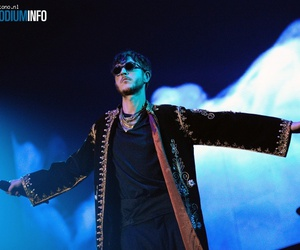 oscar and the wolf image