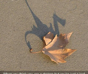 funny, dragon, and leaves image