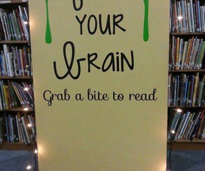 books, feed, and brain image