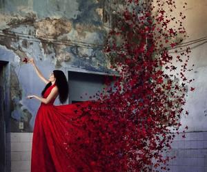 belleza, fuerza, and otoño image