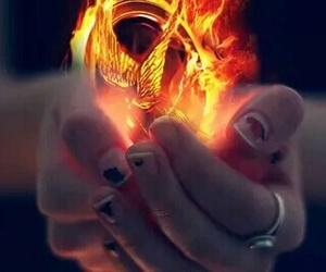 fire and the hunger games image