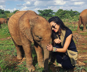 elephant, shay mitchell, and animal image