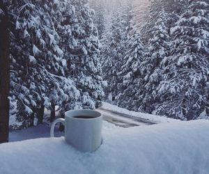 beautiful, coffee, and photography image