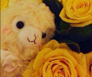 alpaca, rose, and arpakasso image