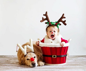 christmas, dog, and baby image