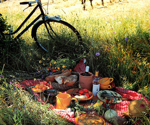 picnic, food, and bike image