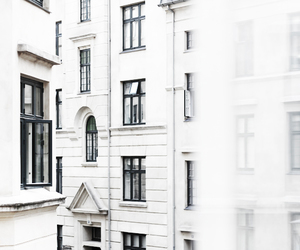 white, city, and building image