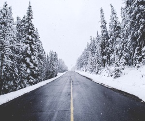 snow, road, and tree image
