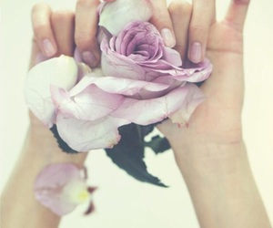 artsy, flower, and hands image