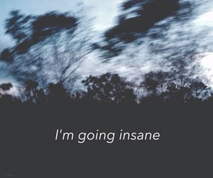 insane, grunge, and quotes image
