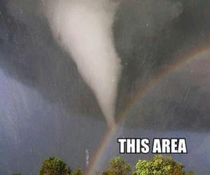 funny, lol, and rainbow image