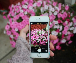 flowers, iphone, and tumblr image