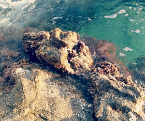 beach, blanes, and mar image