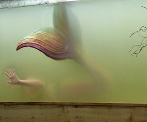 mermaid and water image