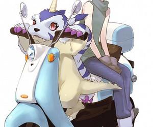 anime, digimon, and anime boy image