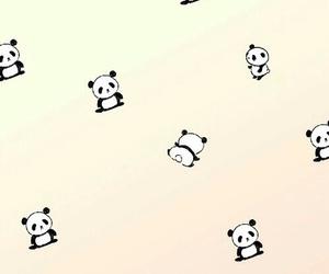 wallpaper, cute, and panda image
