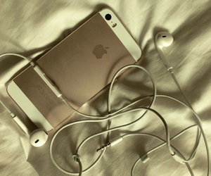 apple, classy, and gold image