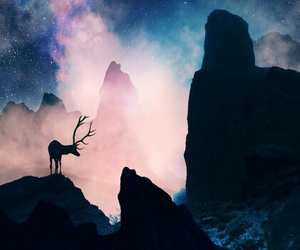 deer, mountains, and nature image